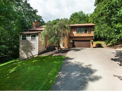 Endicott Single Family Home For Sale: 917 Prescott