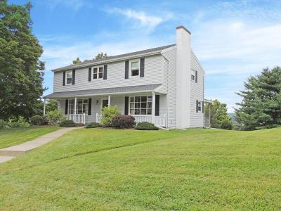Apalachin Single Family Home For Sale: 1 Sunset Court