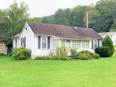 Endicott Single Family Home For Sale: 843 Day Hollow Road