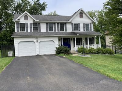 Owego Single Family Home For Sale: 12 Apple Blossom Lane