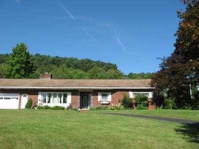 Binghamton Single Family Home For Sale: 825 Lower Stella Ireland Rd