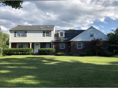 Apalachin Single Family Home For Sale: 986 Marshland Road