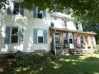 Endicott Single Family Home For Sale: 1414 Day Hollow Rd