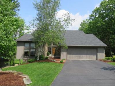 Vestal Single Family Home For Sale: 3417 Almar Drive