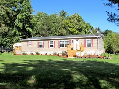 Owego Single Family Home For Sale: 4784 Waits Road