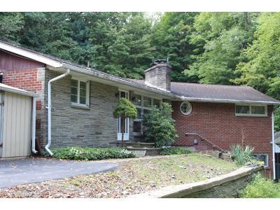 Endicott Single Family Home For Sale: 600 Wilma Street