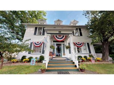 Binghamton Single Family Home For Sale: 365 Conklin Avenue