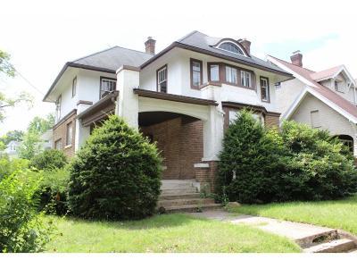 Binghamton Single Family Home For Sale: 91 Grand Blvd