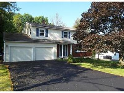 Vestal Single Family Home For Sale: 936 Murray Hill Road