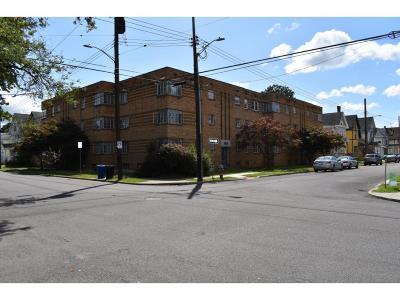 Binghamton Multi Family Home For Sale: 162 Chapin Street