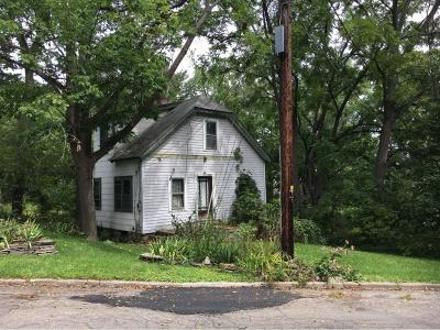Johnson City Single Family Home For Sale: 27 Beech St