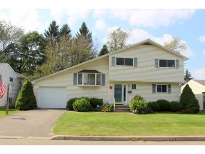 Owego Single Family Home For Sale: 104 Orchard Ave