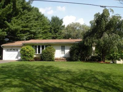 Binghamton Single Family Home For Sale: 584 Stratmill Road