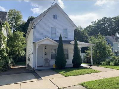 Binghamton Multi Family Home For Sale: 4 Clarke Street