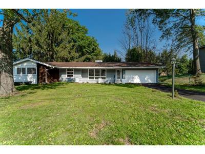 Vestal Single Family Home For Sale: 917 Beechwood