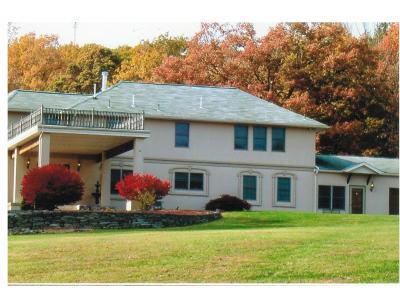 Binghamton Single Family Home For Sale: 1597 Hawlryton Rd