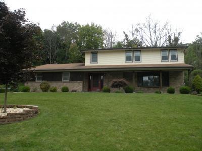 Endwell Single Family Home For Sale: 850 Jon Lane