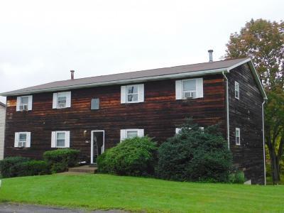 Endicott Multi Family Home For Sale: 361 Boswell Hill Road