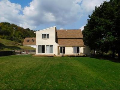 Vestal Single Family Home For Sale: 489 Bunn Hill Rd