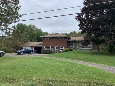 Vestal Single Family Home For Sale: 326 Knight Road