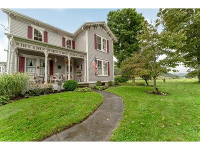 Newark Valley Single Family Home For Sale: 1746 West Creek Rd