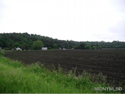 Herkimer, Ilion, Little Falls, Mohawk, Schuyler Residential Lots & Land For Sale: 164 Shells Bush Road
