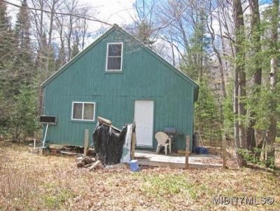 Herkimer County Single Family Home For Sale: Hughes Road