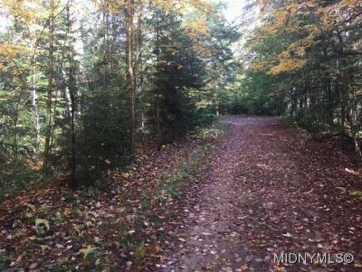 Residential Lots & Land Sold: 247 Tomahawk Trail
