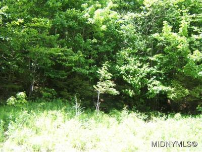 Old Forge Residential Lots & Land For Sale: State Route 28