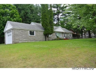 Herkimer County Single Family Home For Sale: 2669 State Route 28