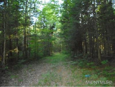 Forestport NY Residential Lots & Land For Sale: $37,000