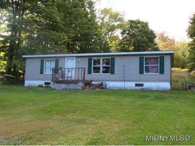 Remsen NY Mobile Home Sold: $29,900