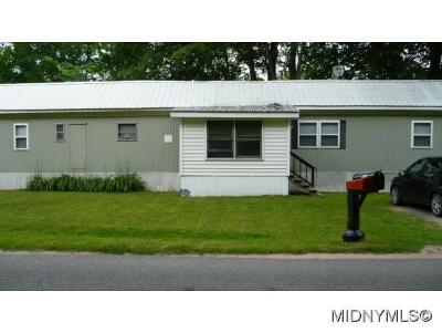 Lee Center Single Family Home For Sale: 5175 Brookfield Rd.