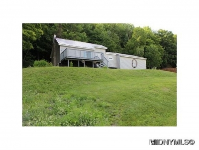 Hinckley Single Family Home For Sale: 11725 State Route 365