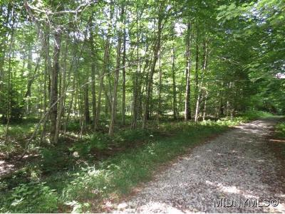 Forestport NY Residential Lots & Land For Sale: $17,900