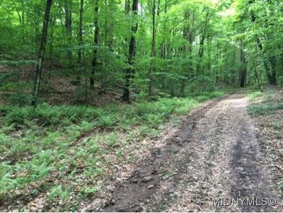 Remsen Residential Lots & Land For Sale: 9671 Briggs Road