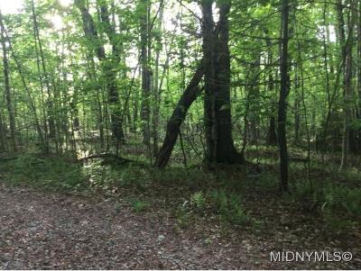 Forestport NY Residential Lots & Land For Sale: $14,500