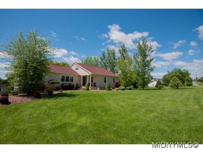 New Hartford Single Family Home For Sale: 3699 Mohawk St