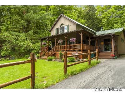 Cassville Single Family Home For Sale: 1231 Hardscrabble Rd