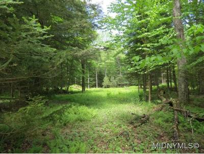 Residential Lots & Land Sale Pending: 17 Myers Hill Rd.
