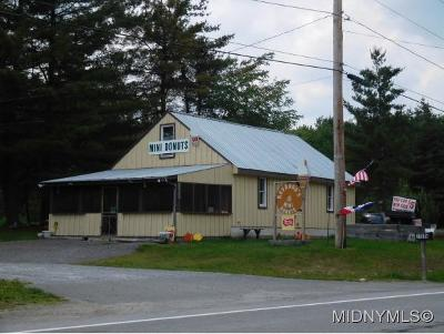 Commercial For Sale: 11913 State Route 28