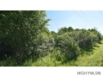 New Hartford Residential Lots & Land For Sale: Higby Road