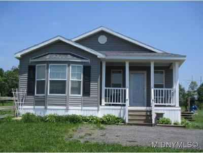 Herkimer, Ilion, Little Falls, Mohawk, Schuyler Mobile Home For Sale: 234 Smith Rd