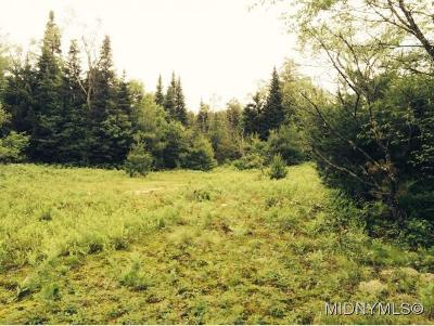 Remsen Residential Lots & Land For Sale: Hughes Rd