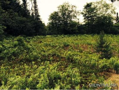 Remsen Residential Lots & Land For Sale: 1 Hughes Rd