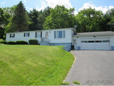 Herkimer County Single Family Home For Sale: 3162 State Route 5s