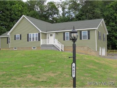 Herkimer County Single Family Home For Sale: 462 Joslin Hill Rd