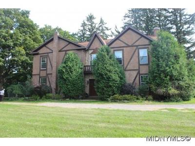 Herkimer County Single Family Home For Sale: 295 Fiery Hill Rd