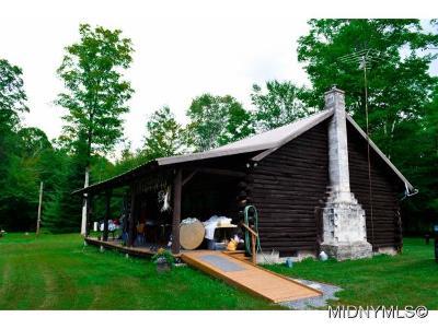 Herkimer County Single Family Home For Sale: 236 Webb Lane