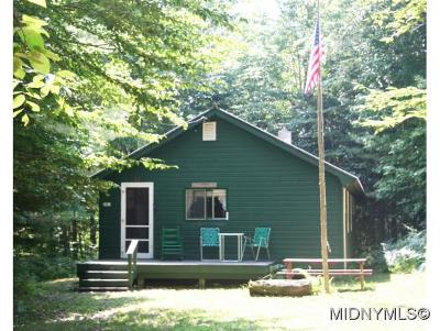 Herkimer County Single Family Home For Sale: 281 Silverstone Road
